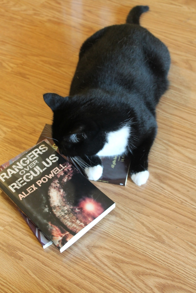 sniffing books is the highest praise a cat can offer